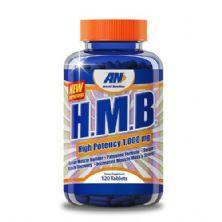 HMB - 120 cápsulas - Arnold Nutrition