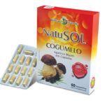 NatuSol Cogumelo - 60 Cápsulas - Terra Verde